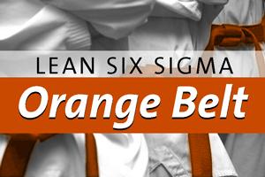 lean-six-sigma-orange-belt