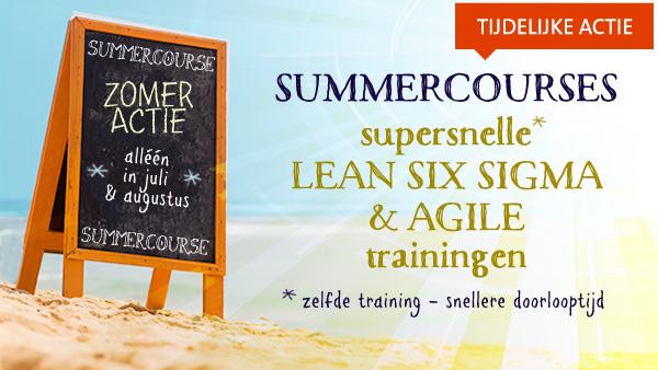 summercourses lean en lean six sigma